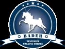 db-logo-nav-new