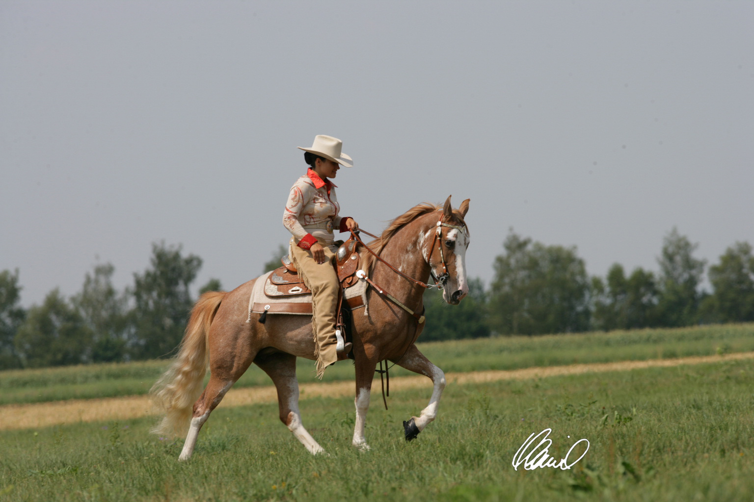 Tennessee Walker April Reiten 35